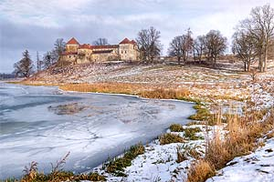 Ru львовская область свиржский замок
