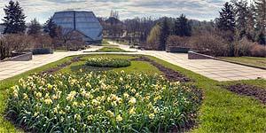 Ru киев национальный ботанический сад